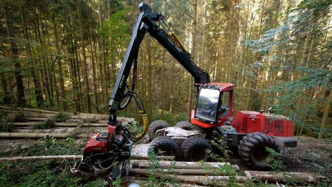 """Vollernter Holz für den Wald aus: Kinder DVD """"Spezialfahrzeuge"""" für Kinder ab 2 Jahren."""